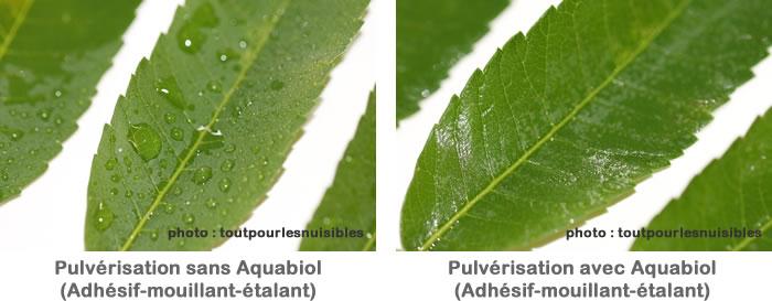 pulverisation-avec-et-sans-mouillant-aquabiol-100ml